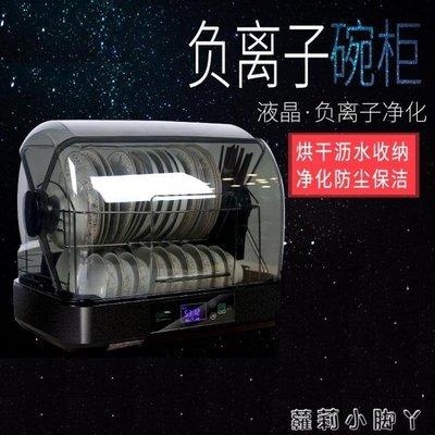 消毒櫃家用立式迷你小型消毒碗櫃廚房烘乾保潔櫃雙層 220v NMS