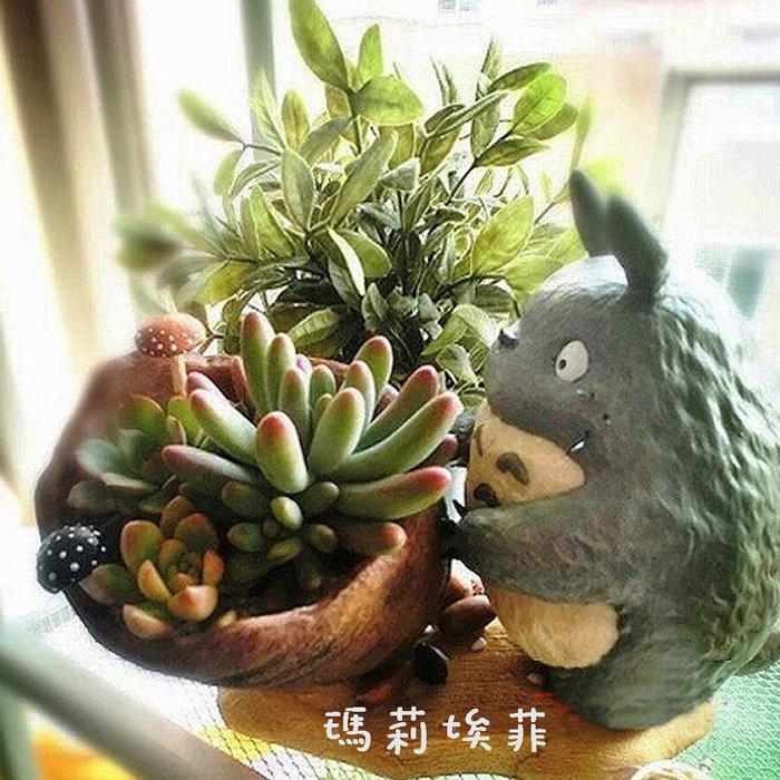不囉嗦一口價給你!! 宮崎駿龍貓Totoro小巧系列 龍貓抱陶缸花器 多肉植物 微景觀花盆 綠色植物辦公室擺飾 特價品!