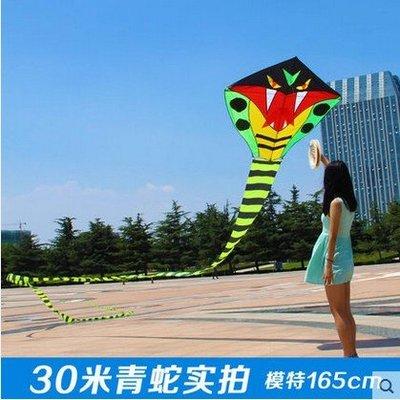 濰坊風箏30米 青蛇風箏 風箏線輪 兒童 成人 蛇風箏 新款 大型