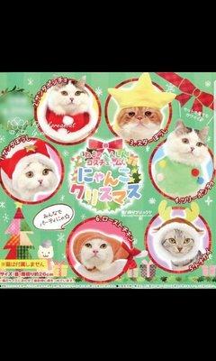 (包郵)日本大會全新 頭笠帽 貓貓扭蛋貓 聖誕可愛 一頂頭巾 披肩