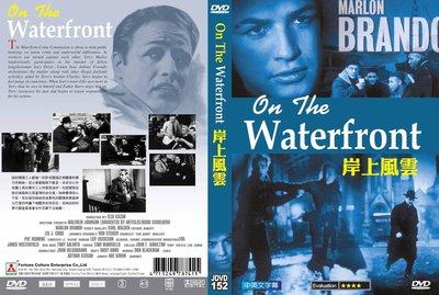 [影音雜貨店] 奧斯卡經典DVD – 岸上風雲 On The Waterfront – 馬龍白蘭度主演 – 全新正版