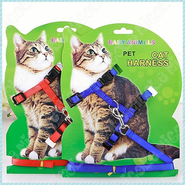 *Nicole寵物*寵物胸背帶遛貓繩〈工字鍊 S號〉貓,胸背,項圈,頸圈,工字型,貓咪牽引繩,貓咪牽繩,蹓兔繩,外出拉帶