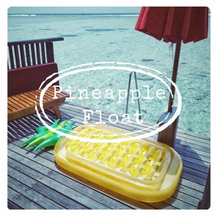 泳圈 鳳梨 浮排 造型泳圈   獨角獸 天鵝 甜甜圈 我們的創意生活館 【3P021】
