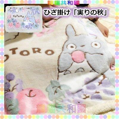 ※龍貓共和國※宮崎駿吉卜力《日本正版TOTORO龍貓 蘋果 滾毛邊毛毯 毯子被子 冷氣毯懶人毯70X100公分》生日禮物