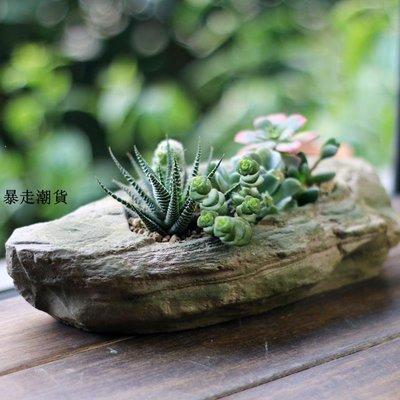 精選 創意自然簡約水泥仿石頭多肉肉植物花盆個性樹脂裝飾品小擺件