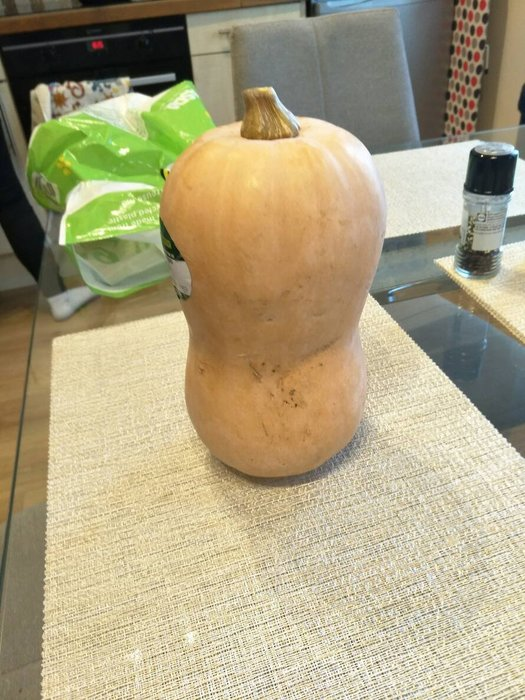 【n0900台灣最便宜】2018 Butternut Squash美國奶油南瓜種子每包6顆$50