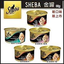 *WANG*【單罐】【日本第一大品牌】黑貓Sheba《金罐 貓咪美味餐罐》85g 新口味上市 多種口味可選