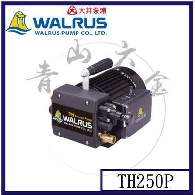 『青山六金』附發票 大井 噴霧機 TH250P 110V 高壓洗車 管路試壓抓漏 清洗冷氣機 TH-250P