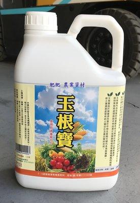 【肥肥】玉米素 玉根寶 4公升罐裝 可防止老化 果實增長肥大 增強代謝促進根系生長 。
