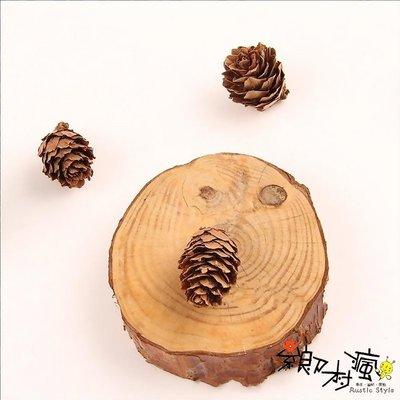 壹樓雜貨 1F Zakka-鄉村風【鄉村日式雜貨--天然乾燥原色杉果1顆價(長度約1.5~3cm)-乾燥花圈素材】