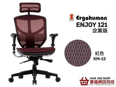 台中豪優(萬元以下銷售冠軍)ENJOY 121 企業版(新增腰靠)高背全網椅不含贈品 含組含運 特價$6300