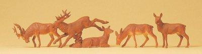 傑仲 (有發票) 博蘭 公司貨 Preiser 動物組 Stags 14179 HO