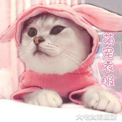 貓咪衣服可愛萌兔耳朵帶帽秋冬裝小貓貓保暖英短狗狗幼貓寵物用品     韓國館