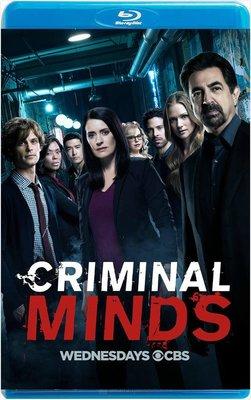 【藍光電影】犯罪心理  罪犯解碼   第十三季  共3碟  Criminal Minds S13