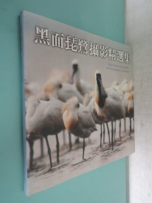 典藏乾坤&書----攝影---黑面琵鷺攝影集 N