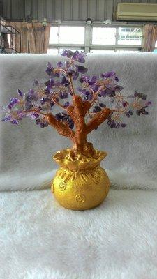 ~~~水晶林~~~紫水晶發財樹⋯