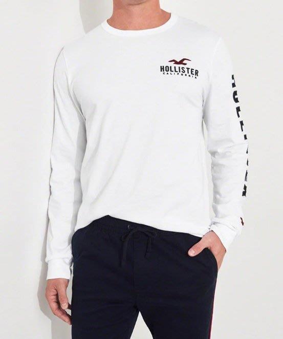 Hollister HCO 海鷗 長袖T恤 車繡貼布logo 現貨 白色