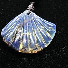 多米尼加藍珀 多明尼加藍珀 藍珀貝殼