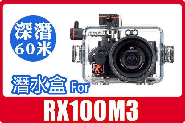 美國 Ikelite for Sony RX100M3 軍規防水盒 潛水殼