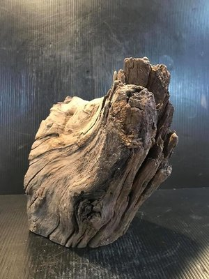 【 檜人檜語 】黃蓮木素材20