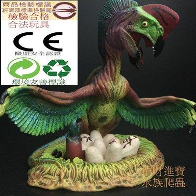 偷蛋龍 竊蛋龍 恐龍 玩具 模型 爬蟲類 侏儸紀 另售 梁龍 牛龍 暴龍 三角龍 迅猛龍 棘龍 非PAPO 阿凡達