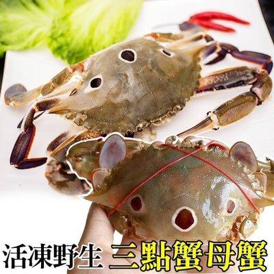 【海陸管家-全省免運】活凍野生三點母蟹X6隻(100-150g/隻)