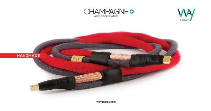 WAY CABLES USB數位線 CHAMPAGNE+