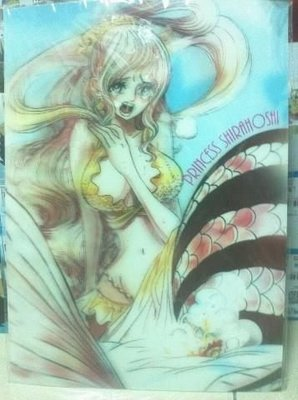 海賊王 航海王 白星公主 3D 立體 海報