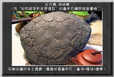 卍【陳媽媽珠料庫】卍 ﹝頂極收藏品﹞【...
