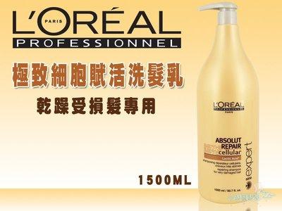 萊雅 L'OREAL 極致細胞賦活洗髮乳1500ml 乾躁、受損髮 小璇