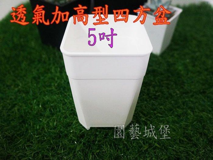 【園藝城堡】透氣加高型四方盆5吋