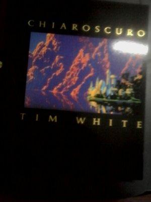英文畫冊-CHIAROSCURO TIM WHITE/PAPER TIGER