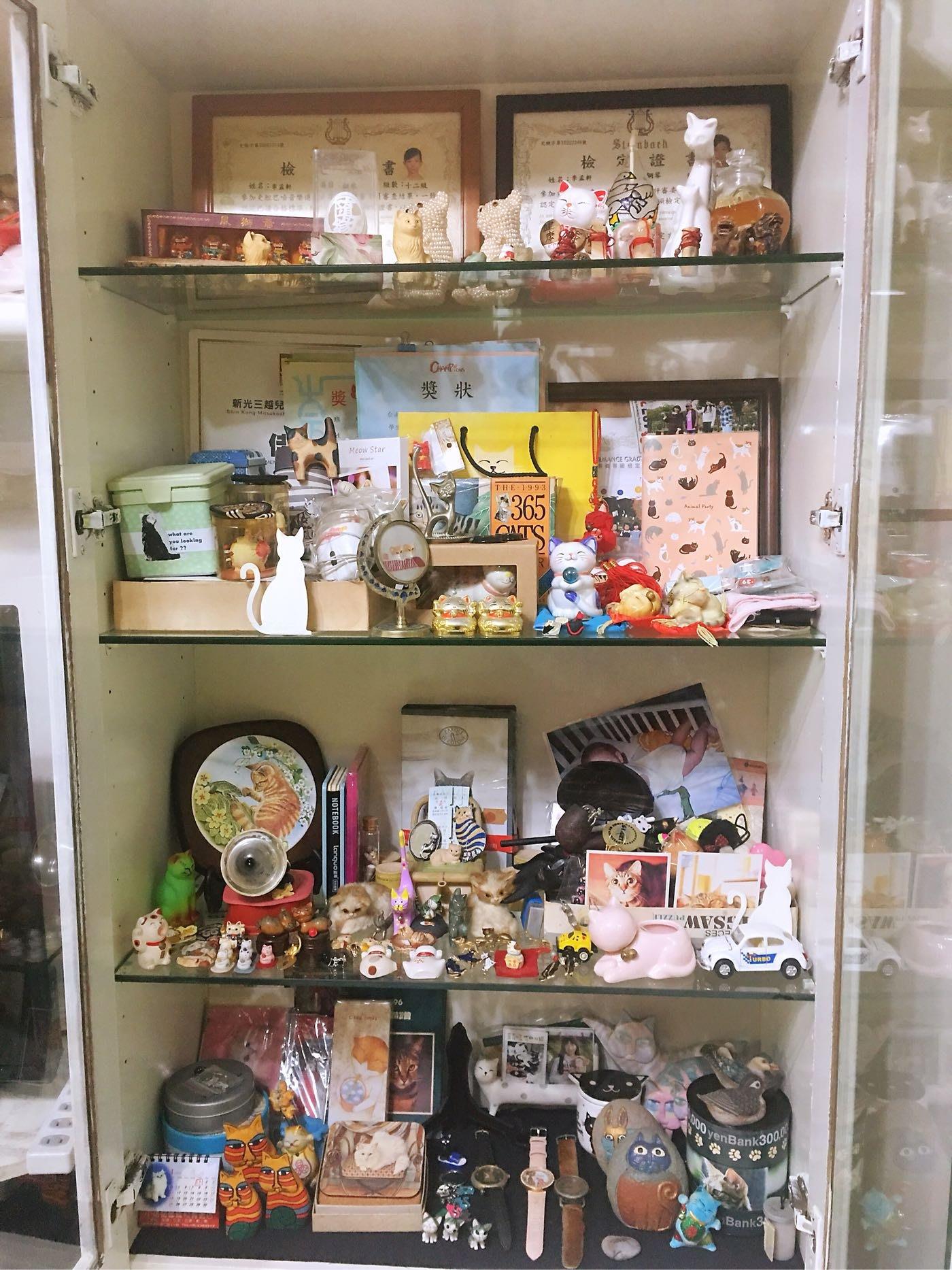 盧萍金寶[收藏30年世界各國的貓咪割愛給有緣人]錯過不再