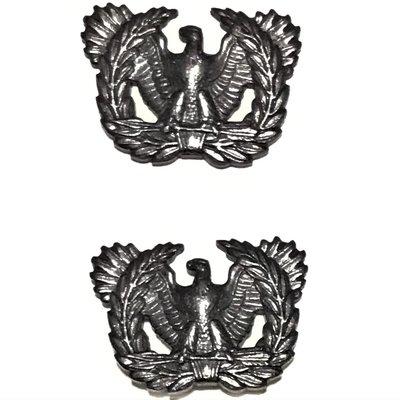 美軍公發 越戰 ARMY 陸軍 Warrant Officers 准尉 金屬兵科章 軍官領章 低視度款 全新