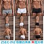 Z58 C-IN2 男生 有素色空白 內褲 男性 CIN2底褲 男 四角褲 【四角褲】【無屌環】【此款稍微偏大】 平角褲