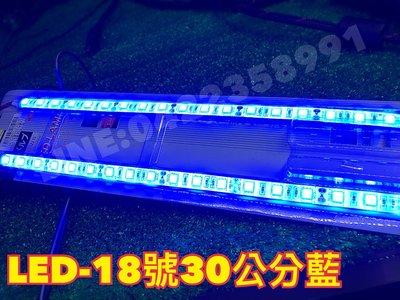 (4入)高亮密集 LED 17號30公分藍滴膠防水燈條發光體 30公分 燈條 氣氛燈 車箱燈 底盤燈