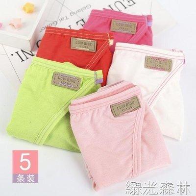 哆啦本鋪 內衣 5條禮盒裝內褲女棉棉質面料夏季女士輕熟低腰三角褲衩頭D655