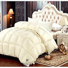 【新視界生活館】雙人羽毛被羽絨被6*7尺保暖舒適雙人棉被(有多款重量尺寸)012001