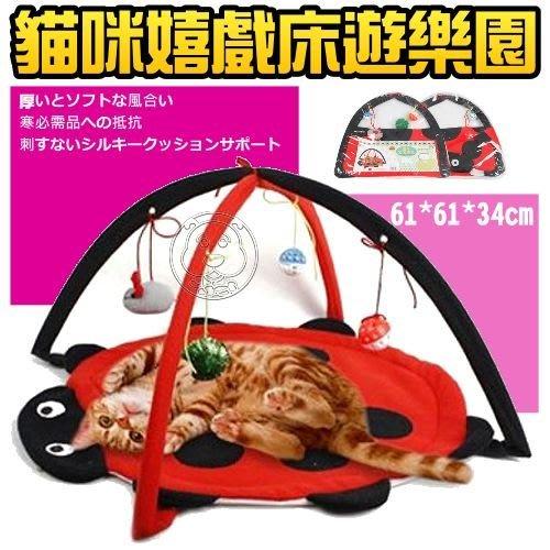 【🐱🐶培菓寵物48H出貨🐰🐹】dyy瓢蟲貓咪嬉戲床摺疊遊樂園61cm 特價299元(補貨中 下標前請先詢問)
