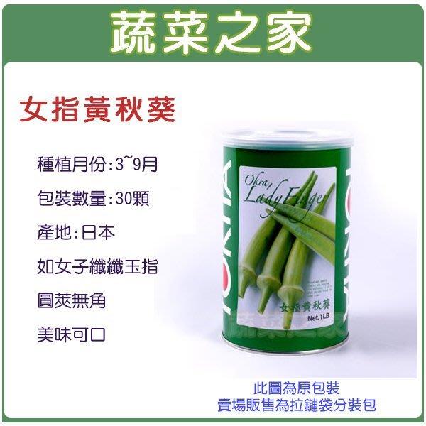 【蔬菜之家】G79.女指黃秋葵種子30顆(日本進口種子.如女子纖纖玉指,圓莢無角,美味可口.蔬菜種子)