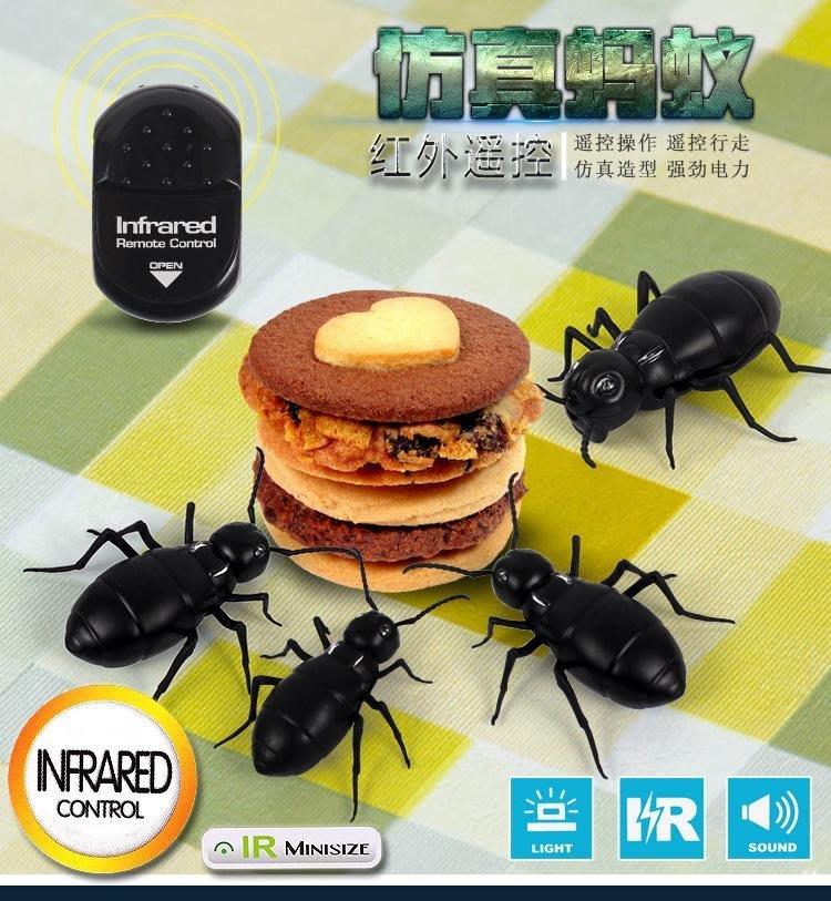 省很多~遥控螞蟻.整人遥控動物玩具.仿真螞蟻