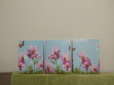 現貨【30*40cm】【厚0.9cm】花卉-客廳現代簡約裝飾畫無框畫壁畫牆畫.3聯畫.三聯畫