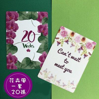 歐美INS訂製IG寶寶嬰兒新生兒媽媽懷孕月份天數里程碑拍照攝影背景紀念紀錄卡片英文花卉彩色20張