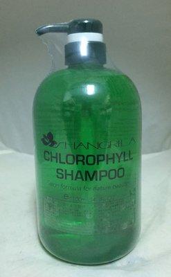 造型師 維爾特 (舊富士山娜) 葉綠素深層洗髮精1000ml  X兩瓶 +葉綠素護髮霜1000ml