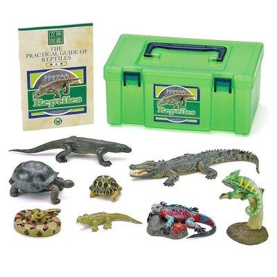 日本正版 立體圖鑑擬真模型BOX 爬蟲類 8種組 小模型 小公仔 日本代購