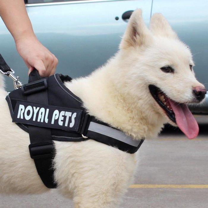 寵物繩狗練子胸背帶中型犬大型犬薩摩