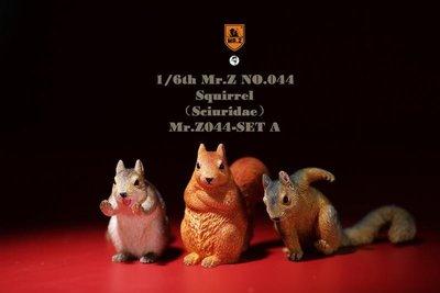 參號倉庫 預購第三季 MR.Z 模擬動物 模型 第44彈 金鼠迎春 小松鼠 套裝 A套 B套 3/26
