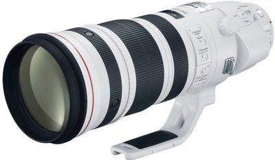 九晴天  租鏡頭 租相機 出租~Canon EF 200-400mm F4L IS USM EXT1.4X