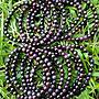 &&~紫雲軒水晶~&&【天然金屬光深紫色系舒俱徠來石圓珠手鍊】1標1條   5.5mm