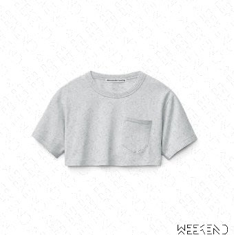 【WEEKEND】 ALEXANDER WANG High Twist 短袖 短版 上衣 T恤 灰色 19春夏